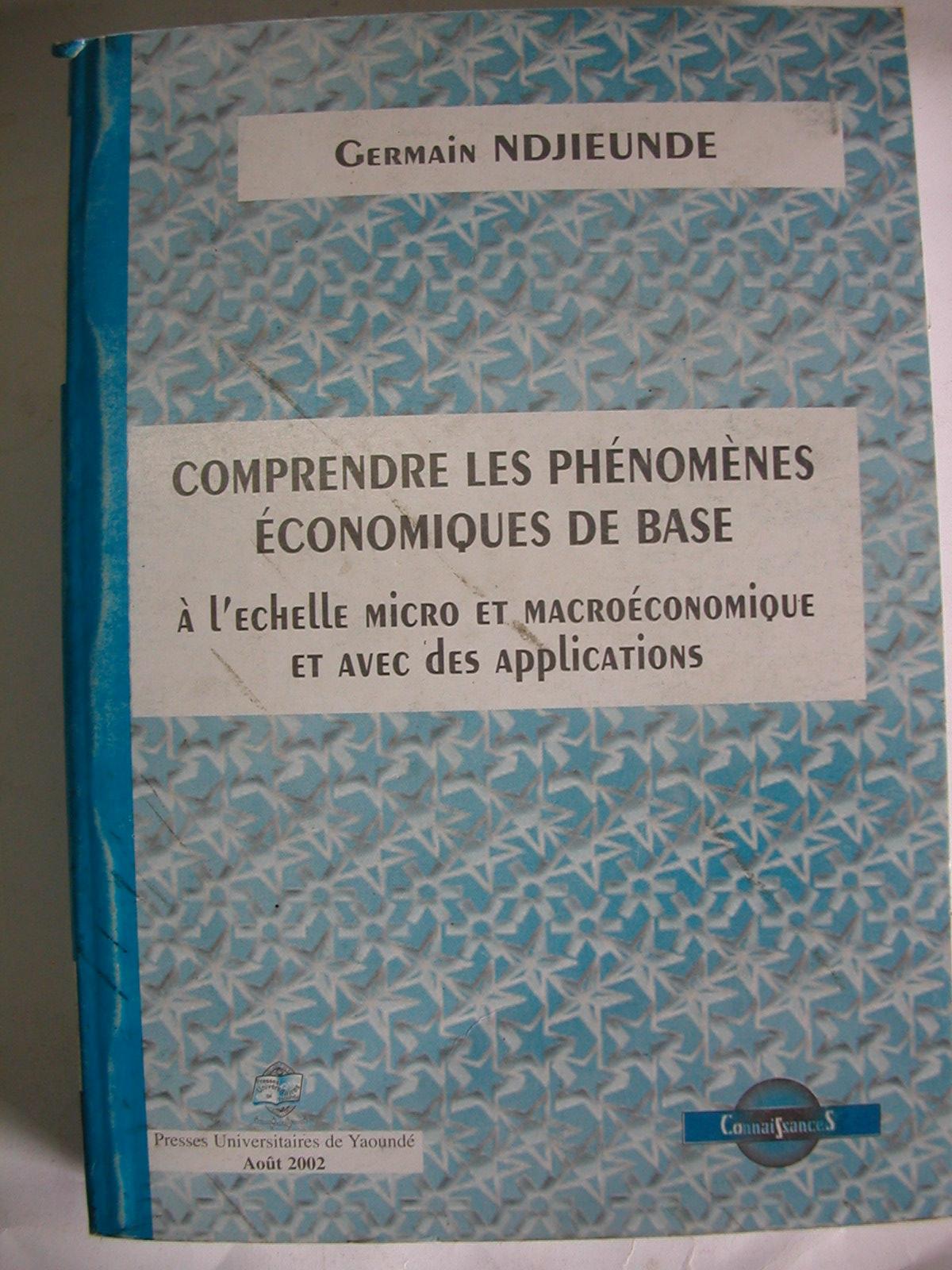 Comprendre les phénomènes économiques de base (2002)1